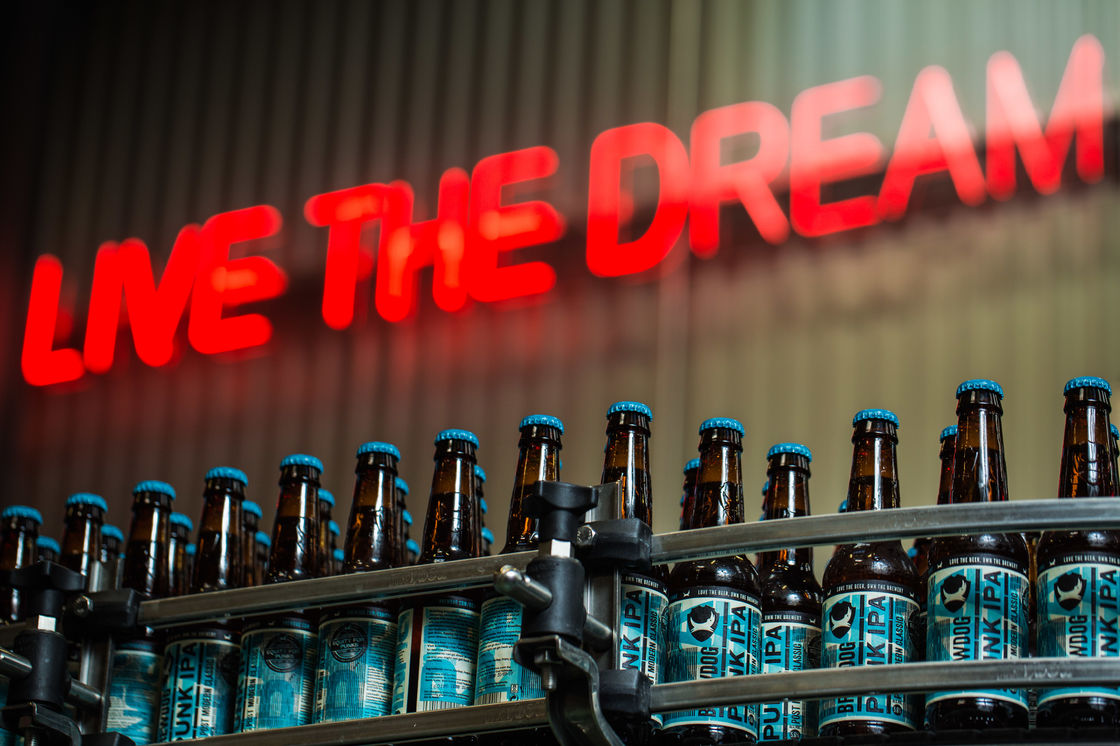NEW YEAR, NEW CAREER (WITH BREWDOG)
